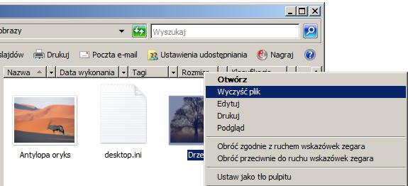 Przykładowy zrzut ekranu